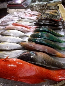 The rainbow of seafood